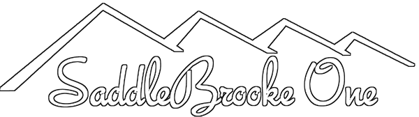 SaddleBrooke One Jobs logo